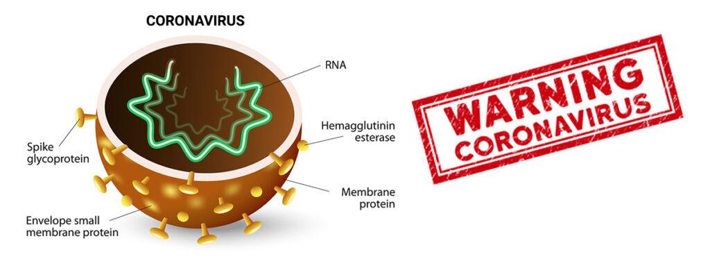 Coronavirus Solution